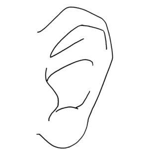 chef-ryan-callahan-sound-ear